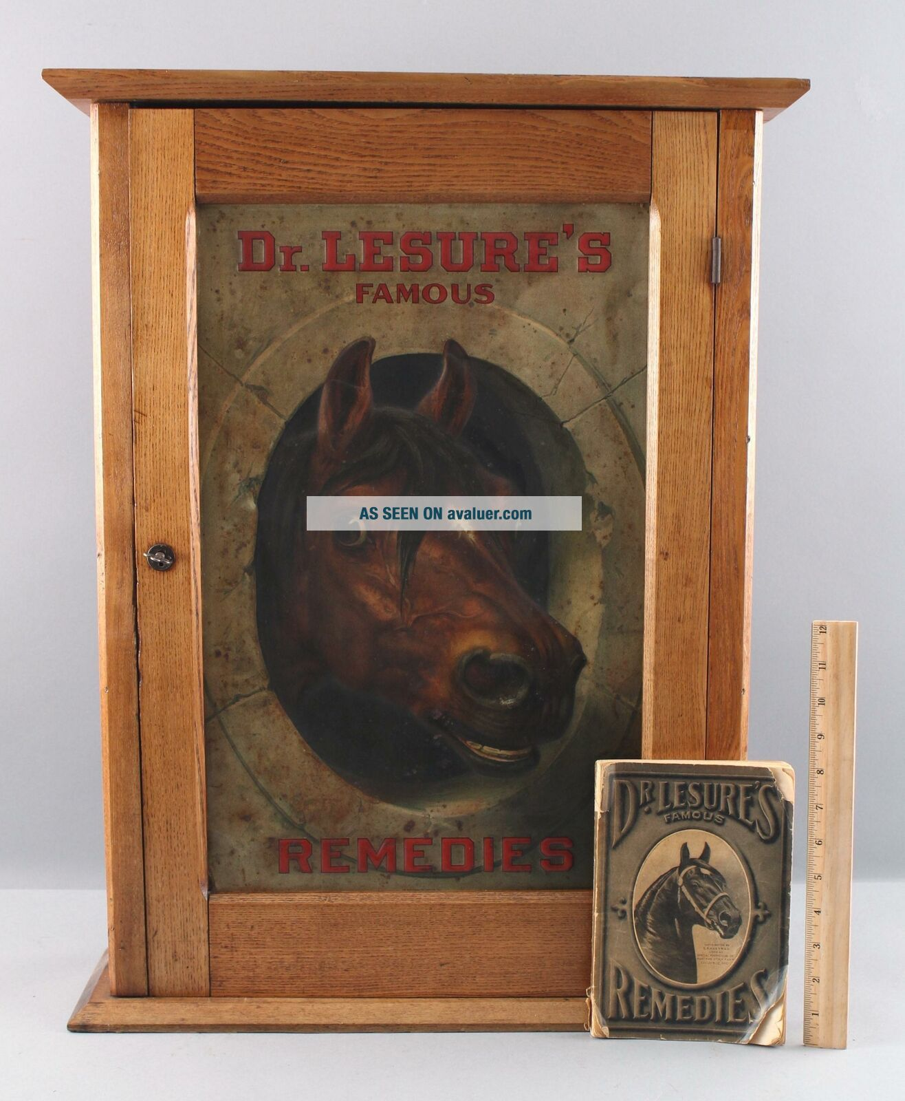 Antique DR.  LESURES REMEDIES Veterinary Medicine Country Store Cabinet Sign Book